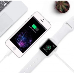 iPhone + Apple Watch Cable