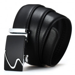 Belt-HM2209